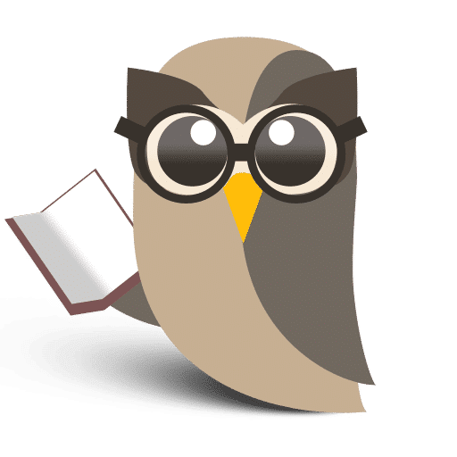 HootSuite Learning Owl