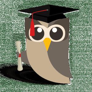 HootSuite University Owl