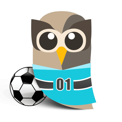 HootSuite celebrates the world cup