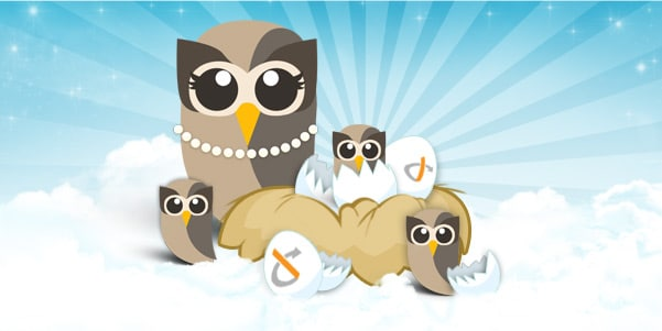 Hatching at HootSuite