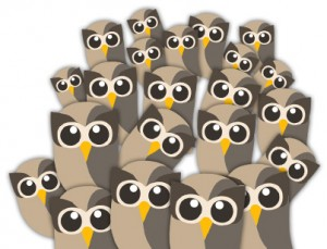 Social Owls