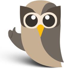 Facebook Owly