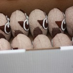 HootSuite Owls packed up