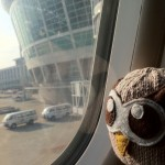 HootSuite Owl takes a flight
