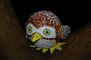 Owly made by Hoot-fan