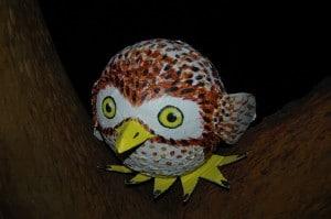 Owly made by Hoot-fan