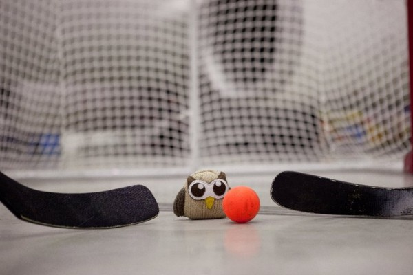 owly plays in net