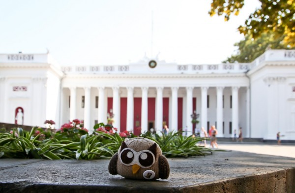 plush owly travels