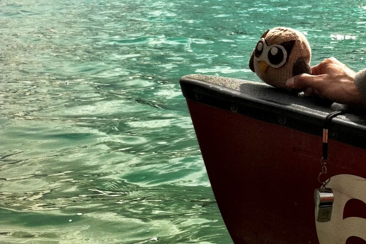 Owly in a boat