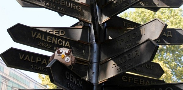 owly directions