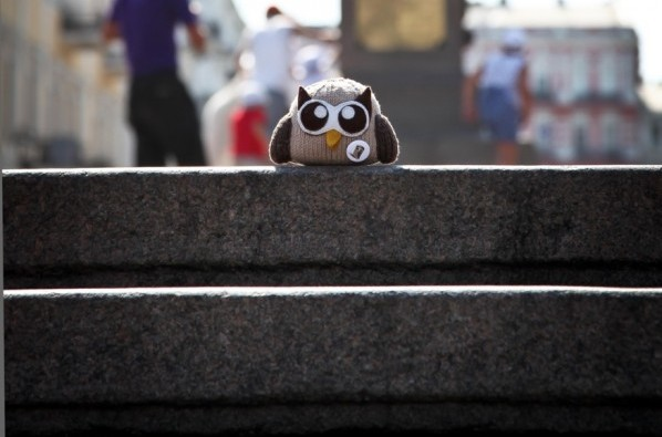 owly on stairs