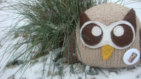 plush owly in the snow