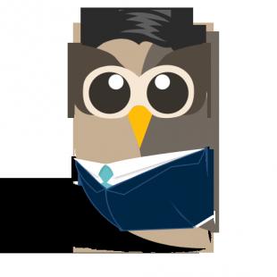 Enterprise Owls