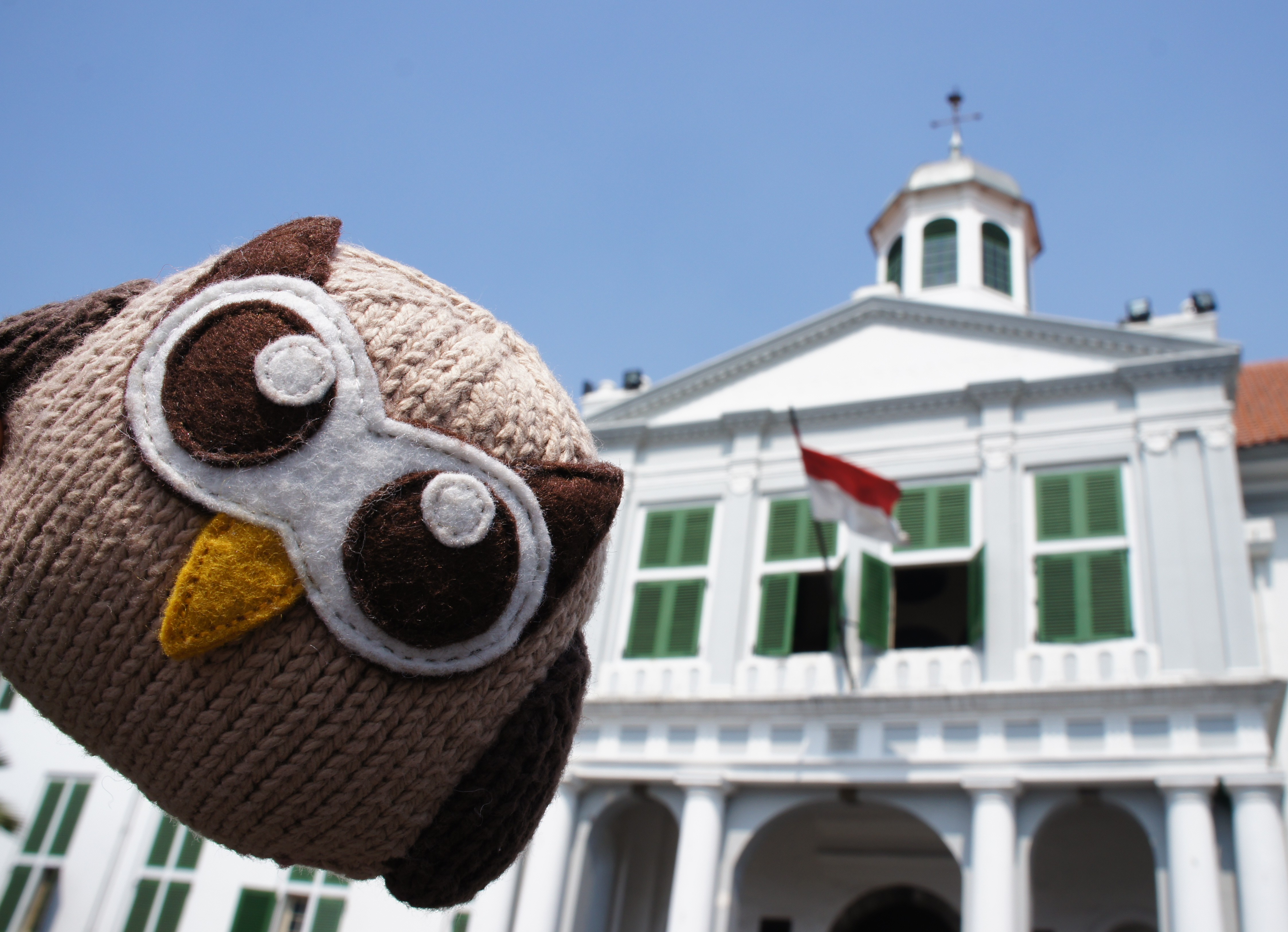 Owly Flying High in Indonesia