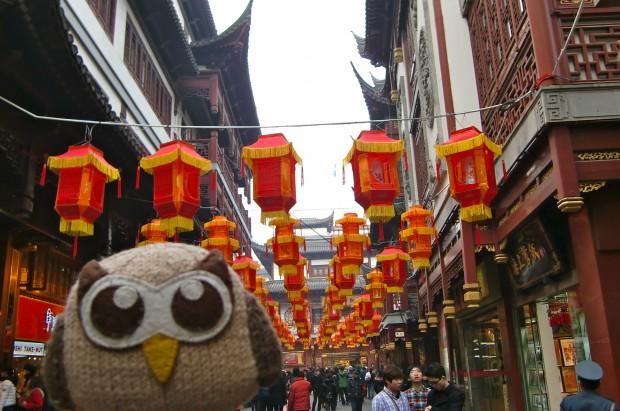 Owly celebrating Chinese New Year