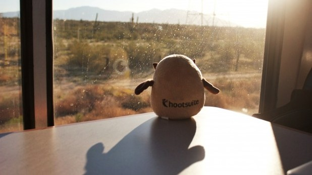Owly enjoying the view on #HootTrak