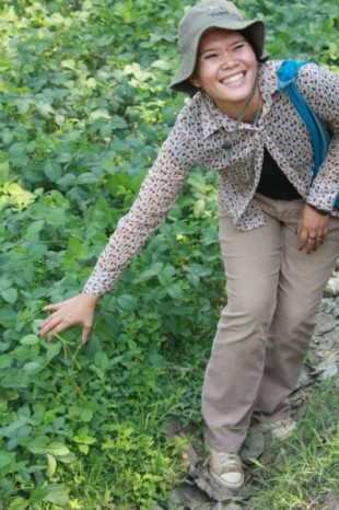 Sustainable agriculture development in Chiang Mai, Thailand. (Photo Credit: Alyssa Kritsch)