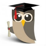 hootuowly150