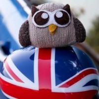 Owly on his big UK trip!