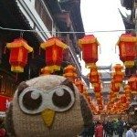 owly-china-feature