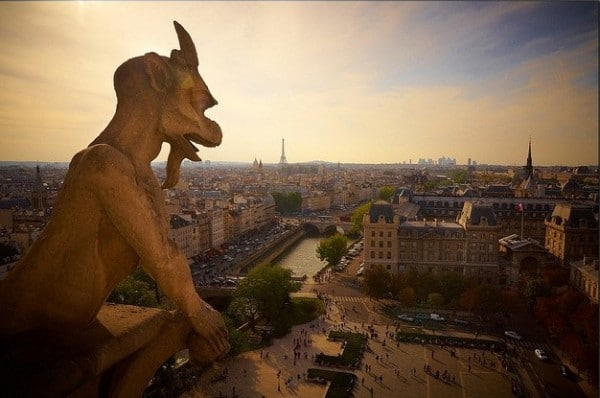 The top of Notre-Dame de Paris, Image by Moyan Brenn