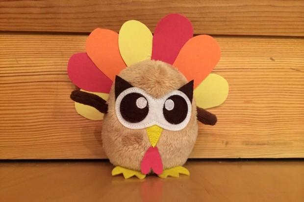 owly turkey