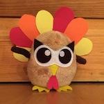 owly-turkey-620x413