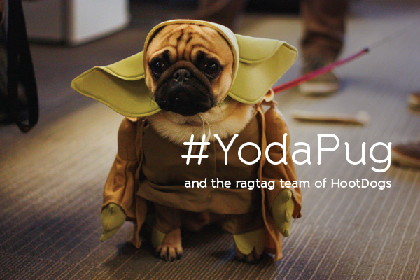 YodaPug Monty. For the full photo set, click the title.