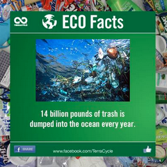 TerraCycle Carbon Footprint