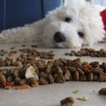 Dog Food 150