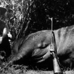 Ernest Hemingway on Safari, 1933. Image via Wikipedia Commons