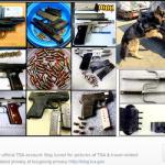 A screenshot of the  TSA Instagram feed