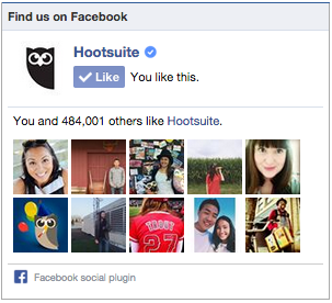 Use Facebook's Like Button widget as a form of social proof