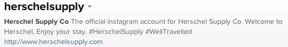 Social Media Profiles - Instagram Bio