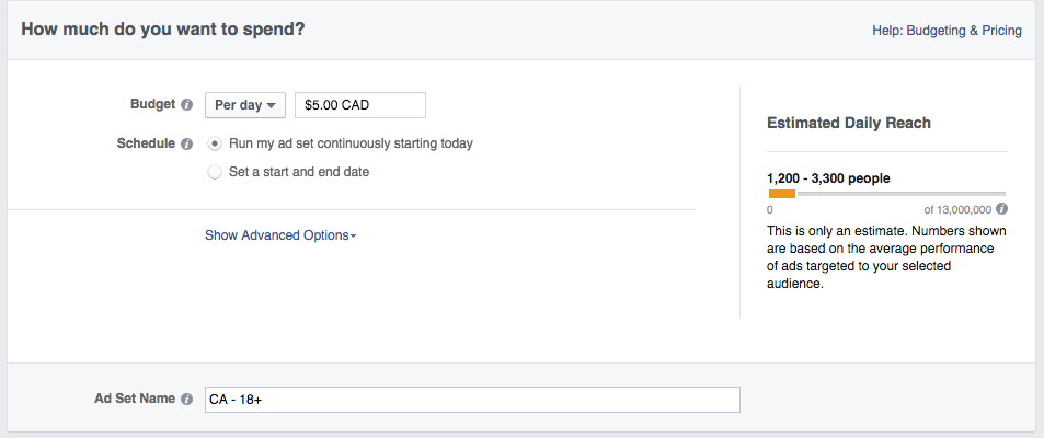 Social media advertising - Facebook ad budget