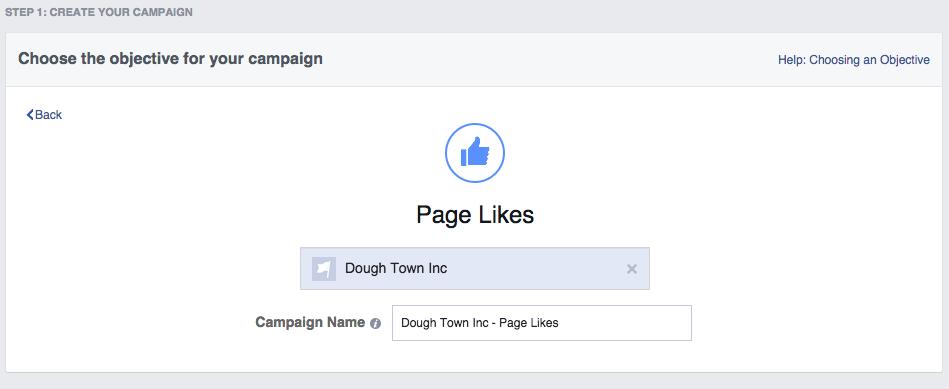 Social media advertising - Facebook ad type