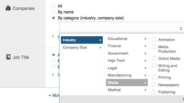 A look at LinkedIn's targeting by category and industry