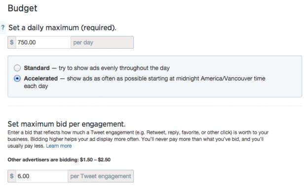 Social media advertising - Twitter ad budgeting
