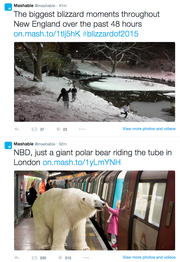 Mashable's Twitter Feed