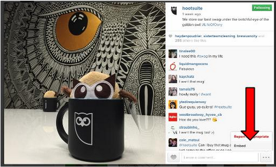 social media integration includes embedding Instagram photos