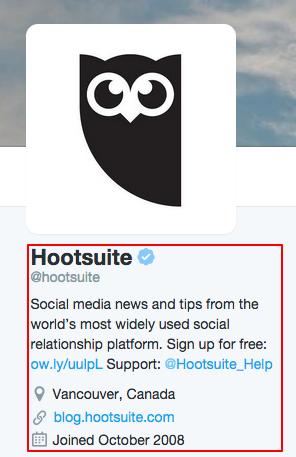 twitter bio for social media and seo