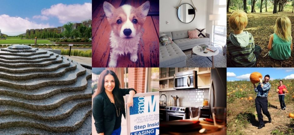 How One Social Media Manager Runs 35 Localized Instagram Accounts   Hootsuite Blog