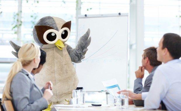 Owly-Stock-31