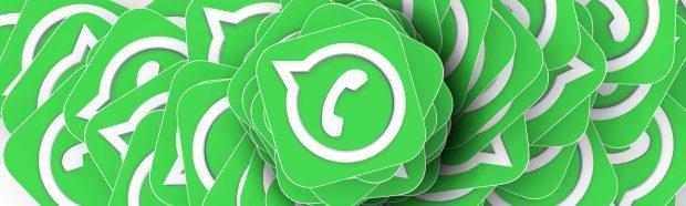 whatsapp per il business