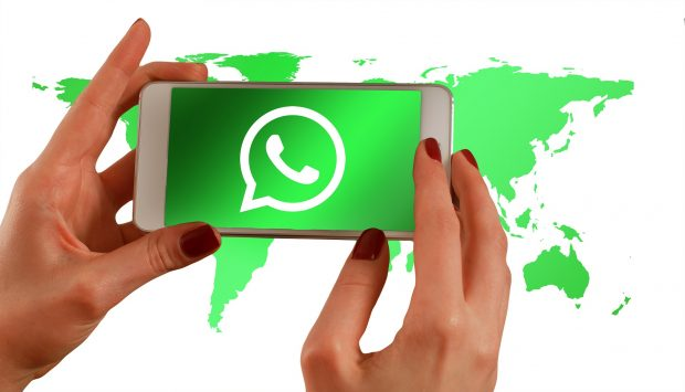 whatsapp per il business