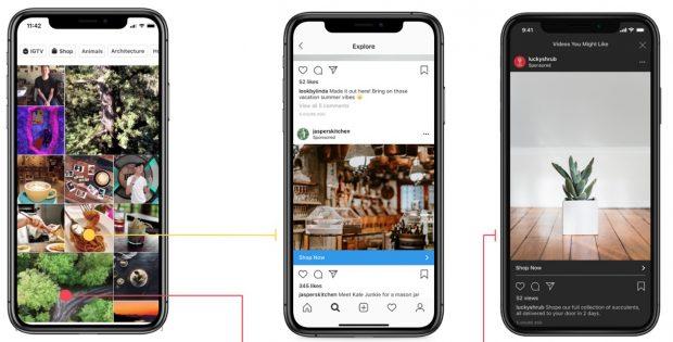 Primera pantalla: Imágenes de la página Explorar de Instagram. Segunda pantalla: Anuncio de Instagram de Jasper Kitchen. Tercera pantalla: Historia de Instagram de la marca luckyshrub de una suculenta