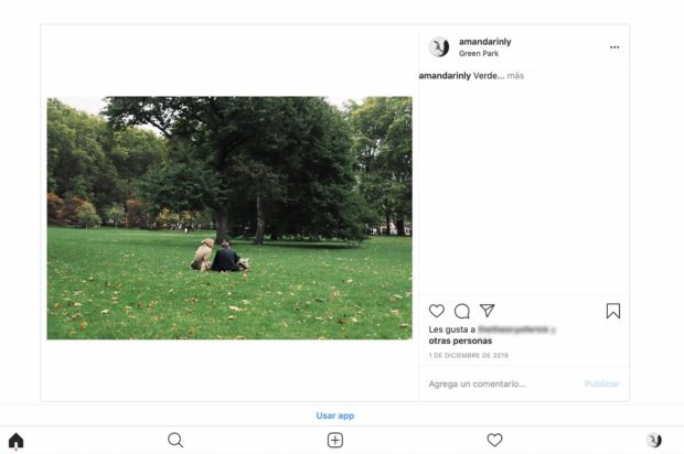 Interfaz móvil de Instagram en Safari