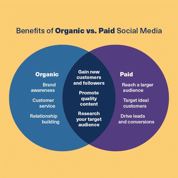 benefits of organic vs paid social media diagram
