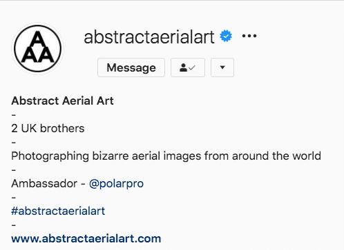 Extrait de la biographie Instagram d'Aerial Art