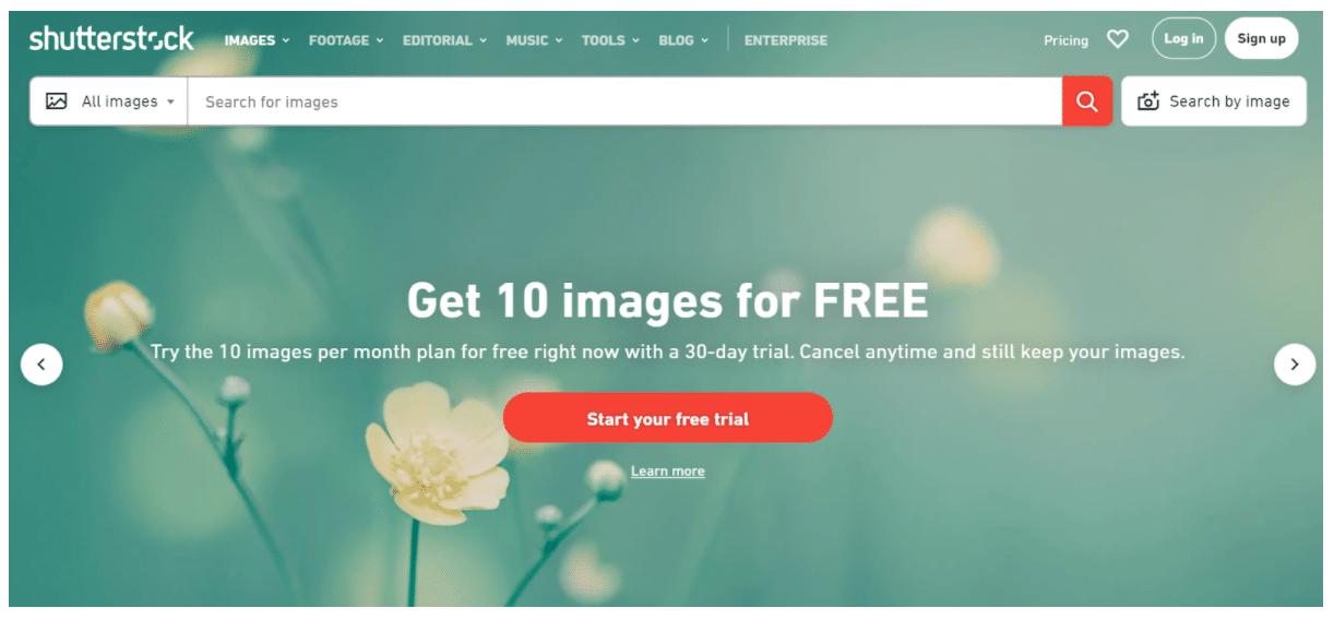 Shutterstock high-quality images